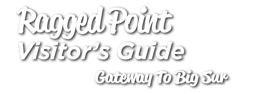 Ragged Point Visitors Guide